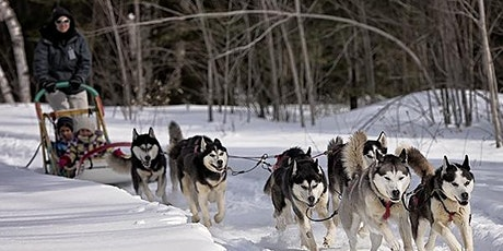 Dog Sled Sunday at Maple Hill Urban Farm tickets