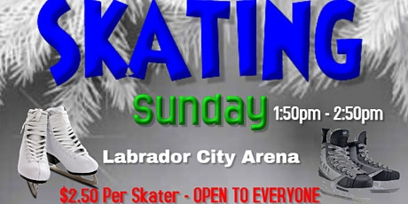 Labrador City Arena Skating - Sunday's from1:50 to 2:50pm tickets