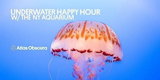 Underwater Happy Hour With the NY Aquarium