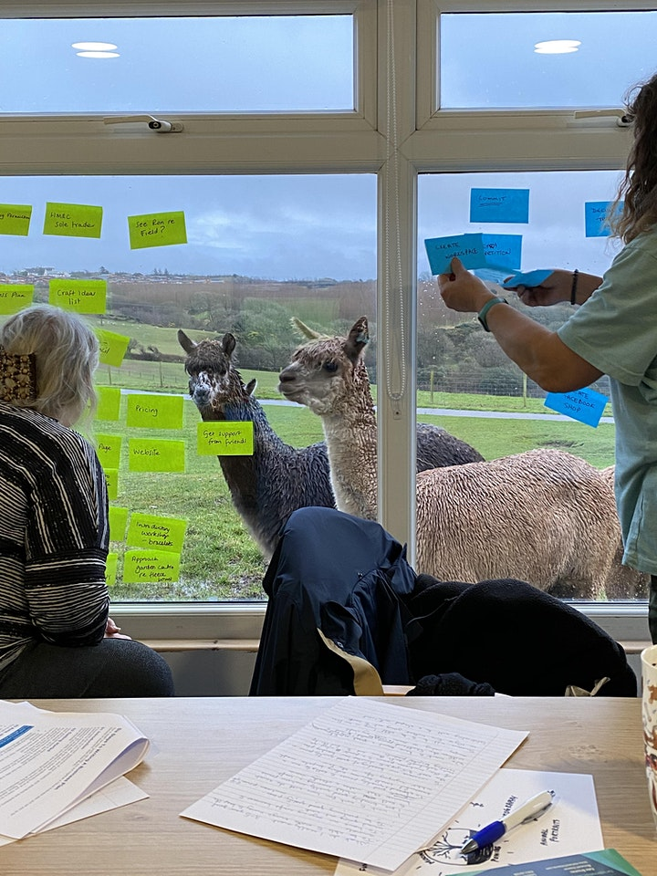 Introduction to Alpacas - Husbandry and Handling image
