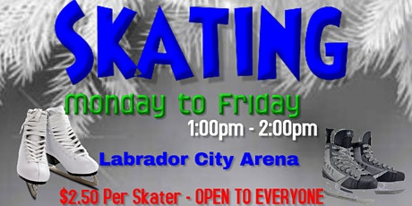 Labrador City Arena Skating - Weekday's from1:00 to 2:00pm tickets