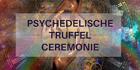 Psychedelische Truffel Ceremonie met Live klankhealing van Coen Tuerlings tickets