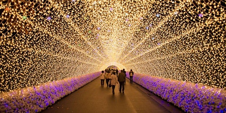 Japan Light and Food Festival tickets