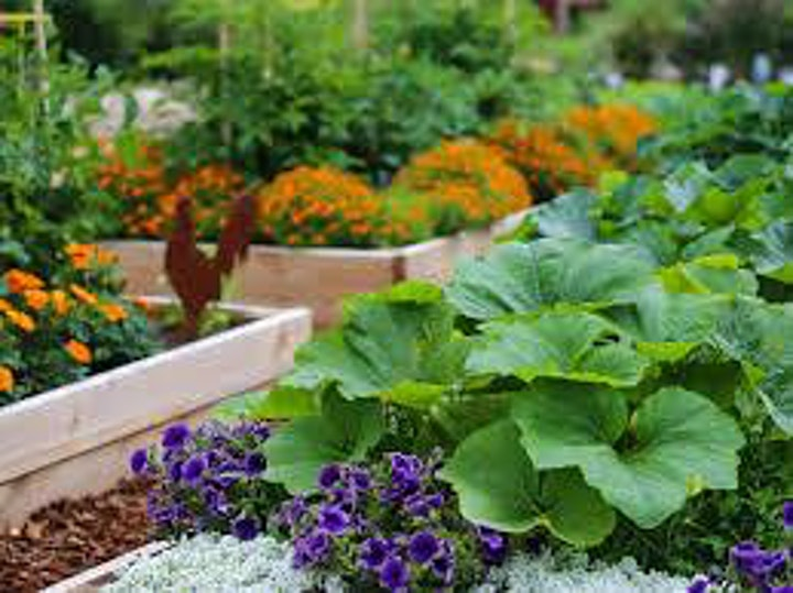 A Fresh Start:  Build Your Own Garden image