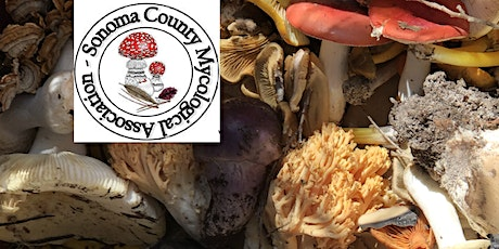SOMA Wild Mushroom Foray - Jan 9 tickets