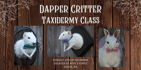 Taxidermy Rabbits, Guinea pigs, & Rats Class tickets