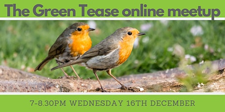 Green Tease December Meetup tickets