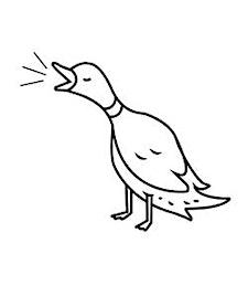 Duck Club logo