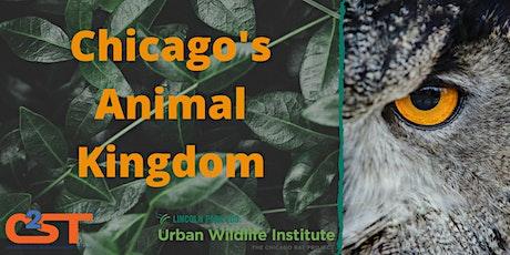 Chicago's Animal Kingdom tickets