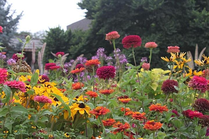 Succulent Topped Birdhouse - USU Garden Member Exclusive Class image