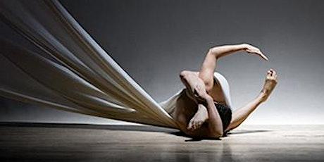 Maureen Fleming Metamorphosis Series tickets