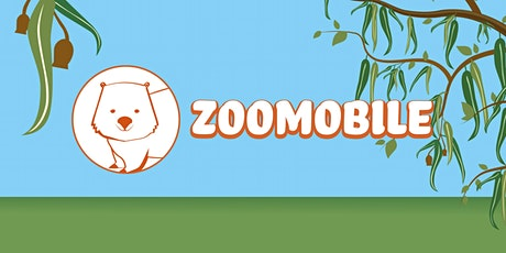 Zoomobile - Ages 8 yrs+ ONLY