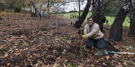 Tree planting at Petersham Common Woods-Practical Conservation activity tickets