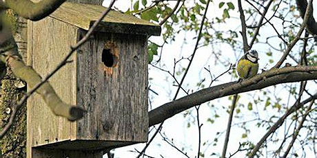 Bird Box Making Workshop at Fort Cumberland, Portsmouth tickets