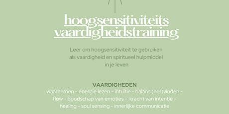 Hoogsensitiviteits Vaardigheids Training/High Sensitivity Skills Training tickets