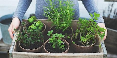 Herbs & Nutrients for Healthy Skin w/Aron McNicholas & Karen Burr tickets