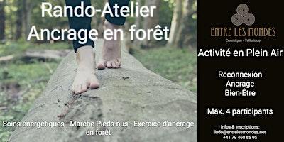 Ancrage en forêt – Rando Atelier