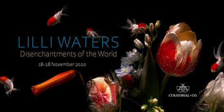 LILLI WATERS | DISENCHANTMENTS OF THE WORLD | 18 - 28 NOV 2020 tickets