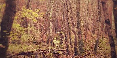 Randonnée Cosmo-Tellurique - Dans les Bois de Moiry billets