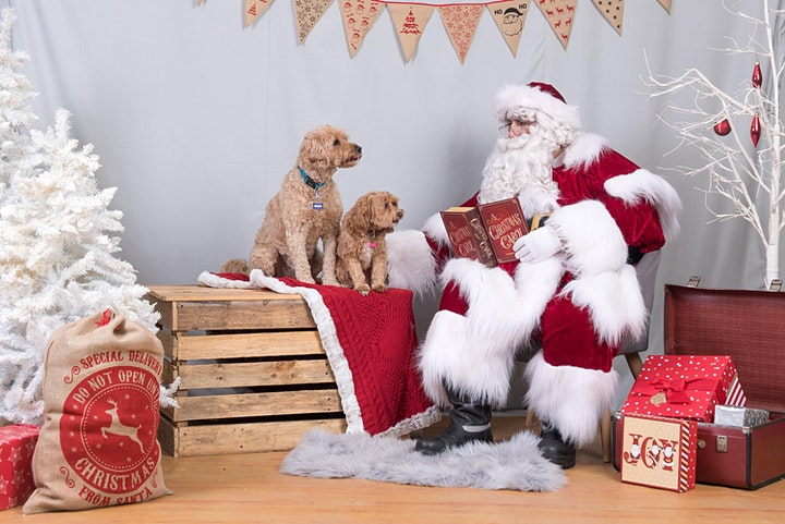 **SOLD OUT**  RSPCA Santa Paws 2020 - Saturday - Room 1 image