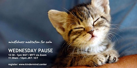 Mindfulness Meditation - Wednesday Pause - Indonesia tickets
