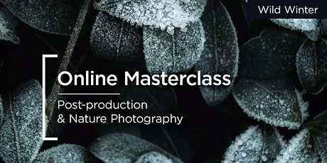 Online Masterclass | Canon | Post-production & Nature Photography tickets