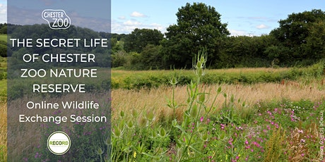 The Secret Life of Chester Zoo Nature Reserve (online talk) tickets