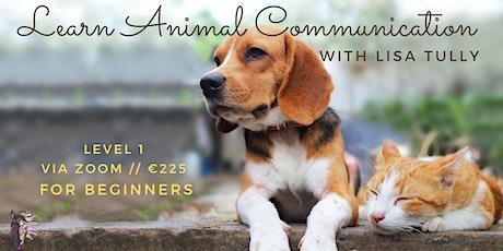 Webinar Animal Communication Level 1 // Lisa Tully tickets