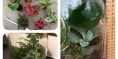 Terrarium Workshop-  Create your  own fabulous indoor garden tickets
