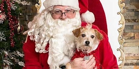 Pet Photos with Santa - Big Dogs tickets