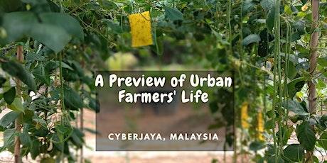 Virtual Farm Tour - A Preview of Urban Farmers Life tickets
