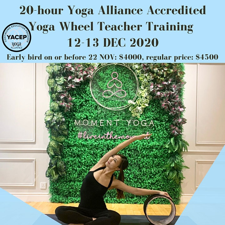 20-hour Yoga Alliance Accredited Yoga Wheel Teacher Training image