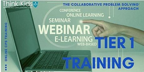 Tier 1 Online- January 13, 15, 20, 22, 2021 CEU/PDP Training tickets