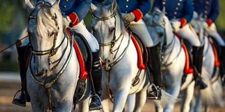 How a Lipizzan Stallion learns to dance tickets