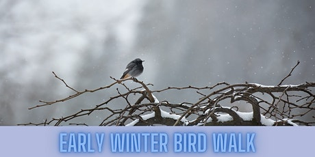 Early Winter Bird Walk tickets