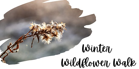Winter Wildflower Walk tickets