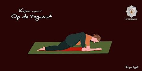 Elke vrijdag Yin Yoga van 12:30 tot 13:30 tickets