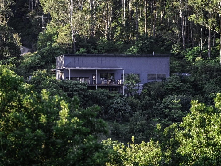 Cape Byron Distillery Rainforest Tour and Tasting January image