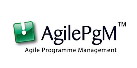 Agile Programme Management - AgilePgM tickets