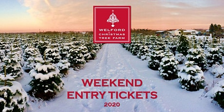 Copy of Christmas at Welford Christmas Tree Farm 2020 tickets