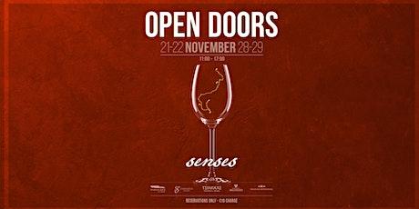 Open Doors - Senses (Ο χορός των αισθήσεων) tickets