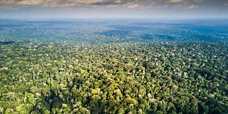 ODZALA -  360° Rainforest Nature Sound Experience tickets
