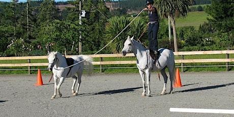 Celebration of Horsemanship December 2020 tickets