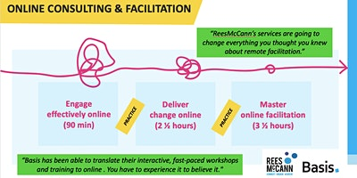Online Consulting and Facilitation