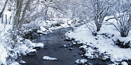 Nature in Winter tickets