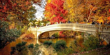 Central Park Social Stroll tickets