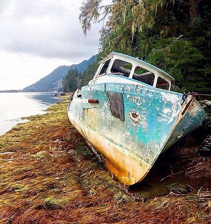 Arts in the Wild: Personal Discoveries on a Journey Across Vancouver Island image