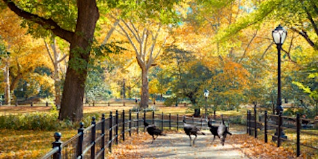 Central Park Adults Only Wild Turkey Scavenger & History Hunt!-NYSN Private tickets