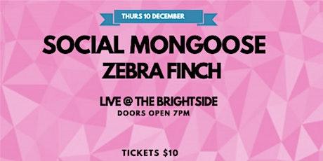 Social Mongoose tickets
