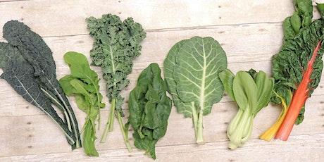 Edible Home Gardening Workshop/Taller de Jardineria Comestible en el Hogar tickets
